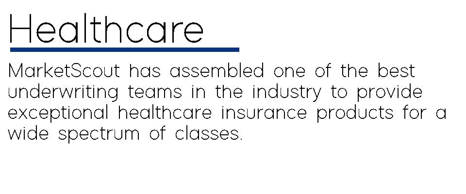 healthcare_excerpt_v10